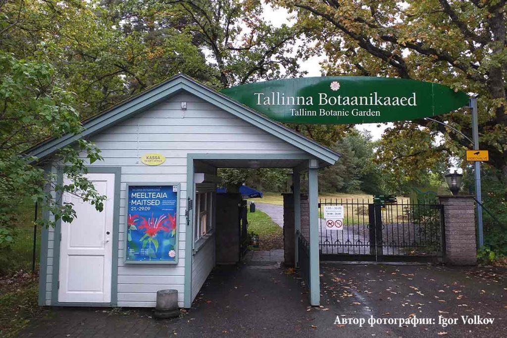 Ботанический сад в Таллинне